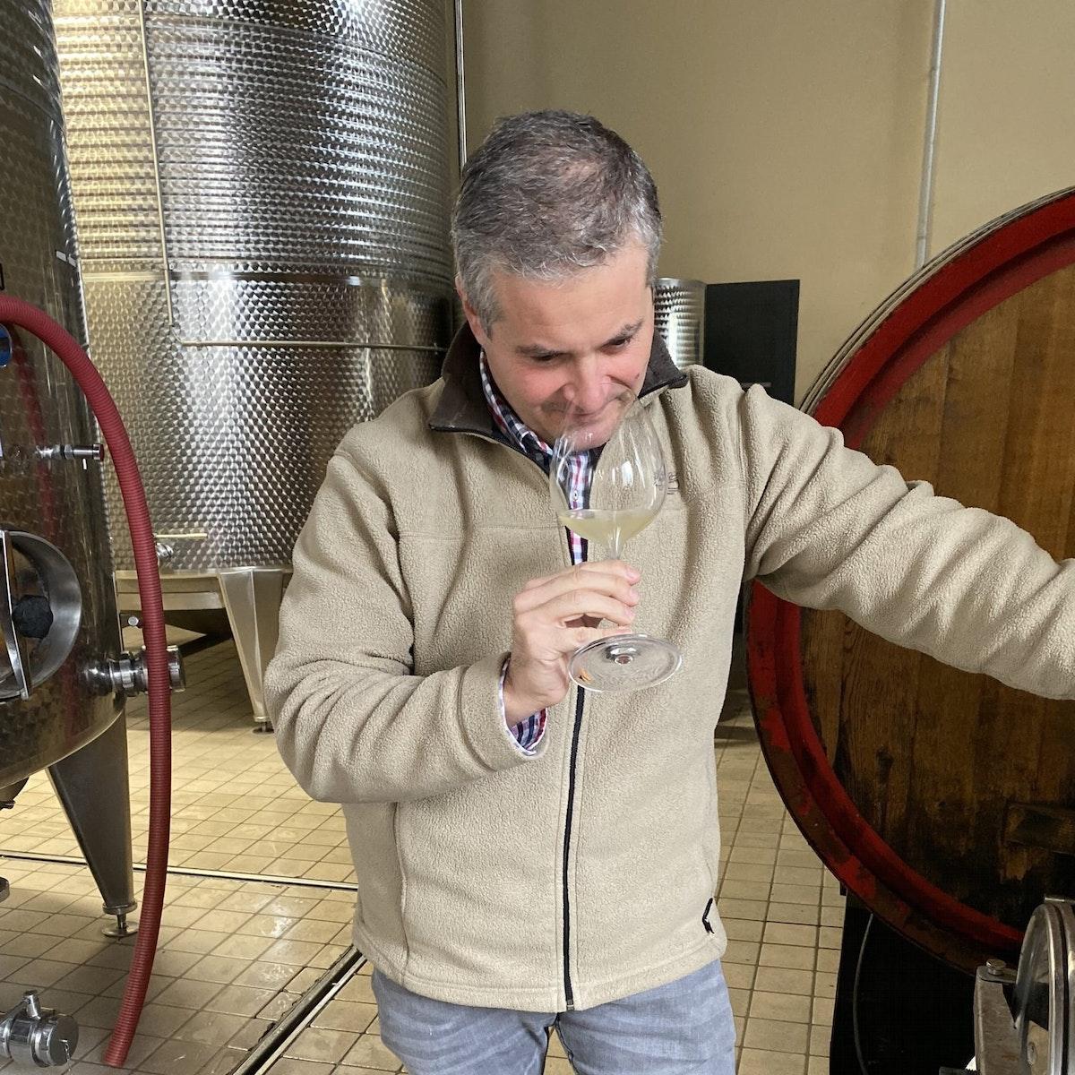 Pinot Grigio 'Borgo Palazzi'