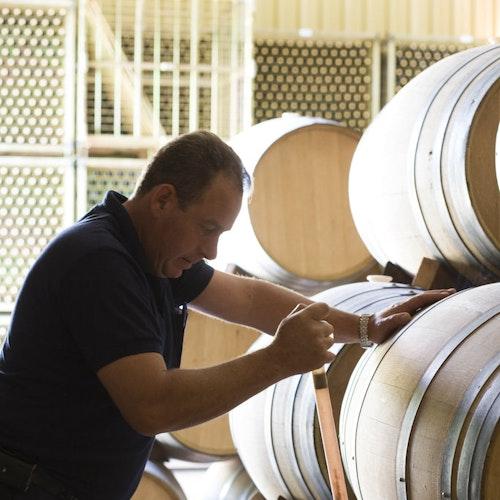 Tempranillo-Cabernet-Sauvignon Vinedo de la Vida
