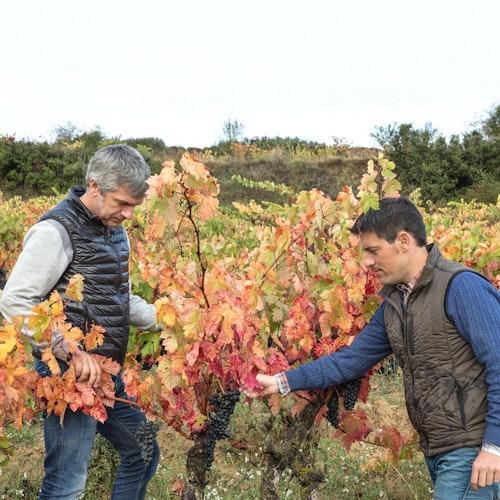 Rioja Blanco 'Montes Obarenes'