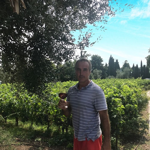 Pinot Grigio Garda